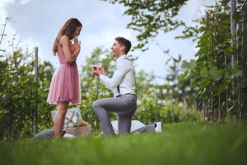 Zaroka v ljubljanskem vinogradu