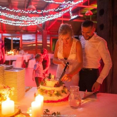 veganska poroka, marjan krebelj, poroka