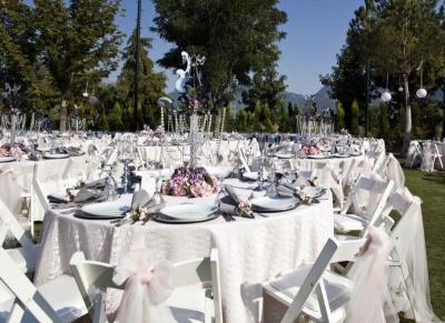 Poroka - kako posesti svate?