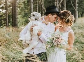poročna obleka, poročni fotograf