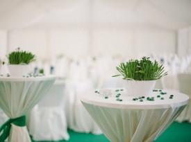 Poročna dekoracija v šotoru