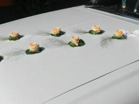 Poročna dekoracija, dekoracija avtomobila.