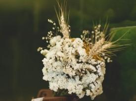 Poročni šopek: Kredenca. Foto: Lenart Zore.