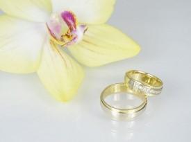 Poročni prstan, poročna prstana, rumeno zlato, kombinacija rumenega in belega zlata, belo zlato.