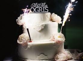 poroka, zaobljuba, ljubezen, katja jemec, ženin, nevesta, poročna torta