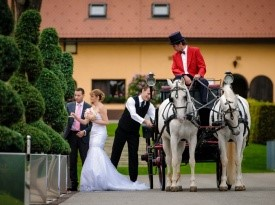 Poroka, mladoporočenca, ženin, nevesta