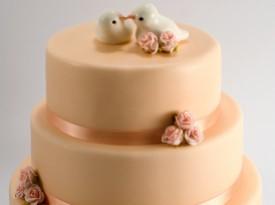Poročna torta - Špela