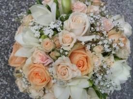 Poročni šopek, Rodanta