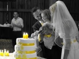 poročna torta, družina, mladoporočenca