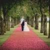 bor roman, foto izziv, poročna fotografija, poroka, zaobljuba,