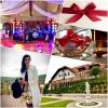 glasba na poroki, animacija na poroki, poročni band, folk idoli, zaobljuba.si