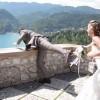 poroka, video, zaobljuba, poročno snemanje